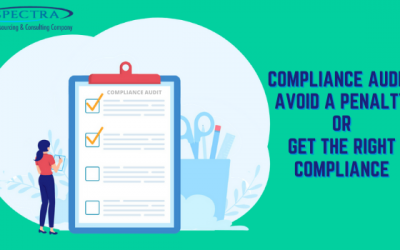 Compliance Audit: Avoid a Penalty or Get the Right Compliance