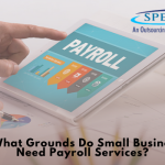 On What Grounds Do Small Businesses Need Payroll Services